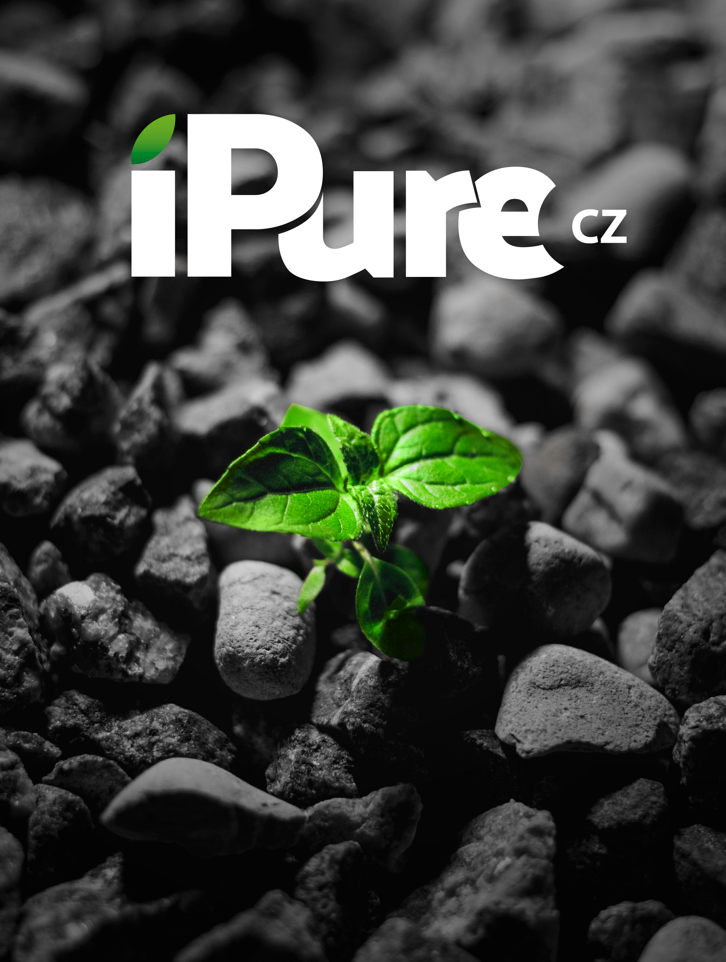iPure - Poster