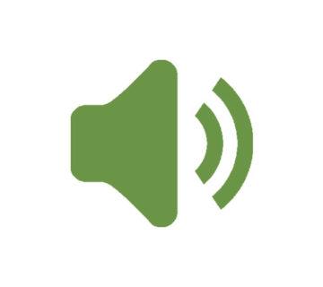 audio verze