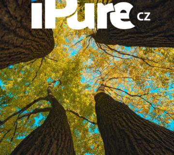 iPure 198/2021